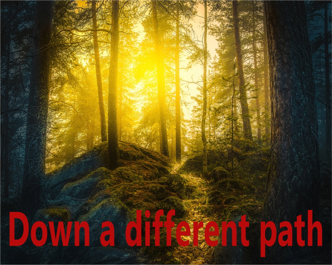 Down a different path